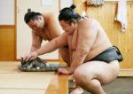 ほのぼの相撲画像で癒されちゃってください(4枚)